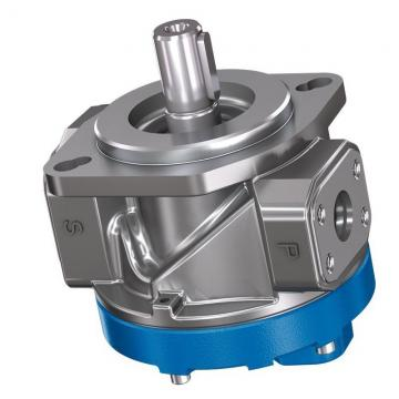 Daikin V38C13RJBX-95 piston pump