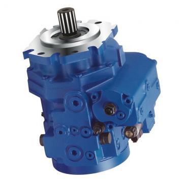 Denison VT6DDS double vane pumps